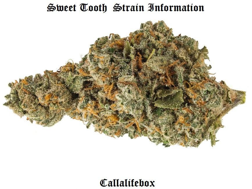 sweettooth com