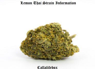 lemon thai
