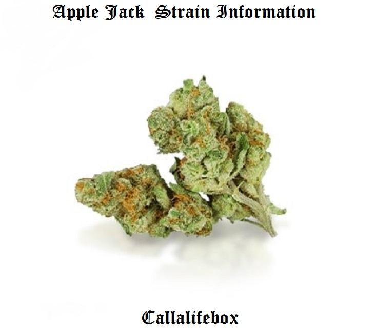 best applejack