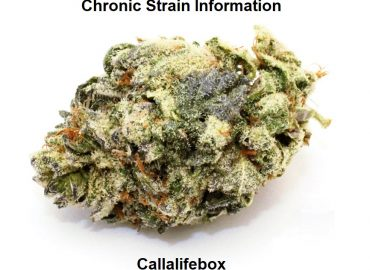 Chronic Strain Information