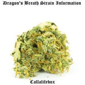 dragon's breath strain